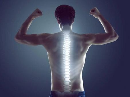 Posture & Corrective Chiropractic Care