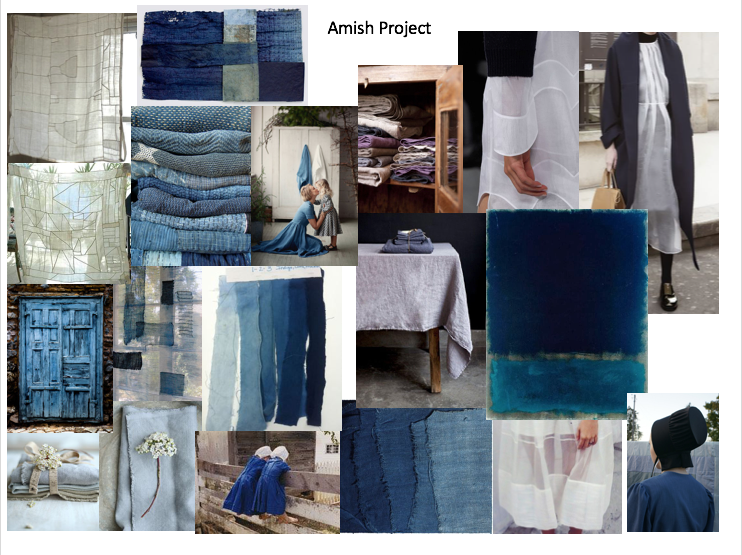 The Amish Project Inspiration