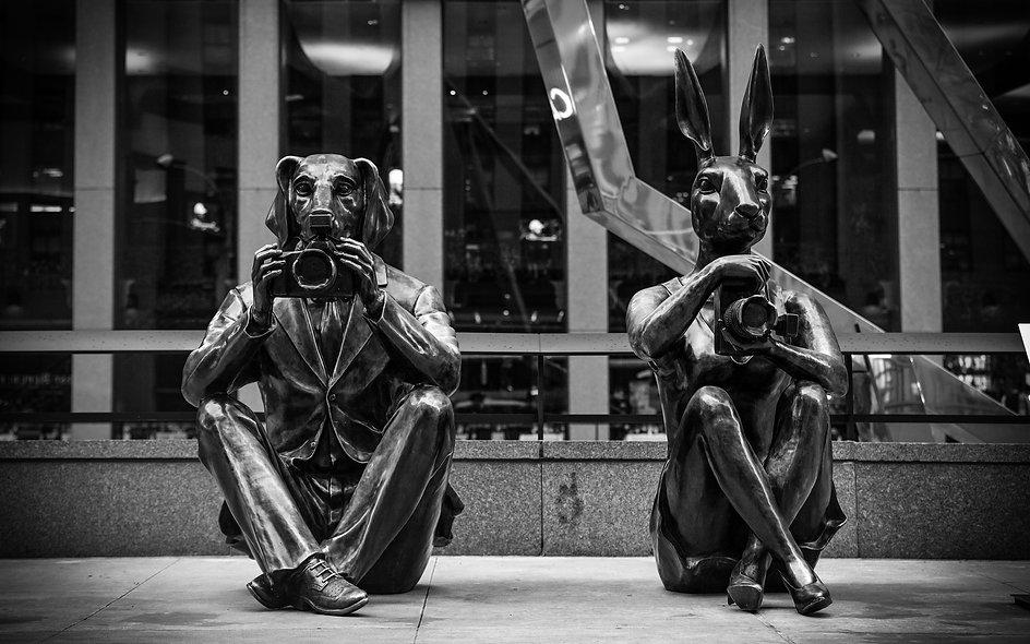 NYC D&B Photo
