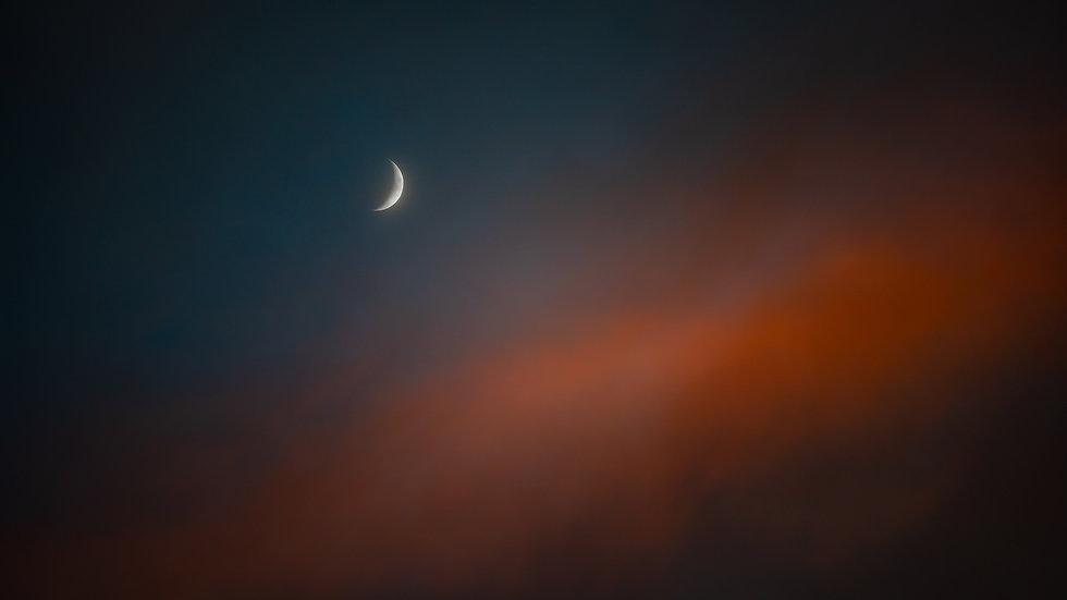 The Moon in Sarasota