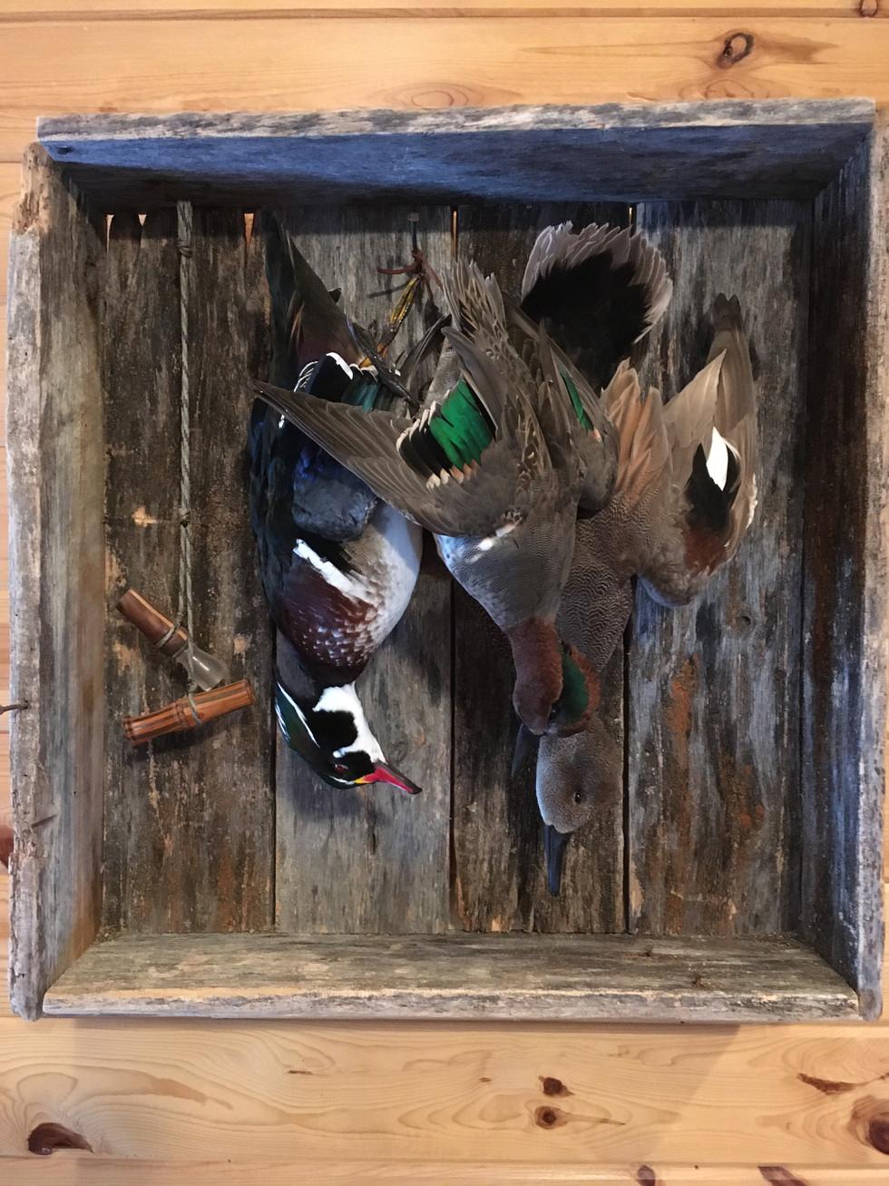 Wood, Teal Ducks