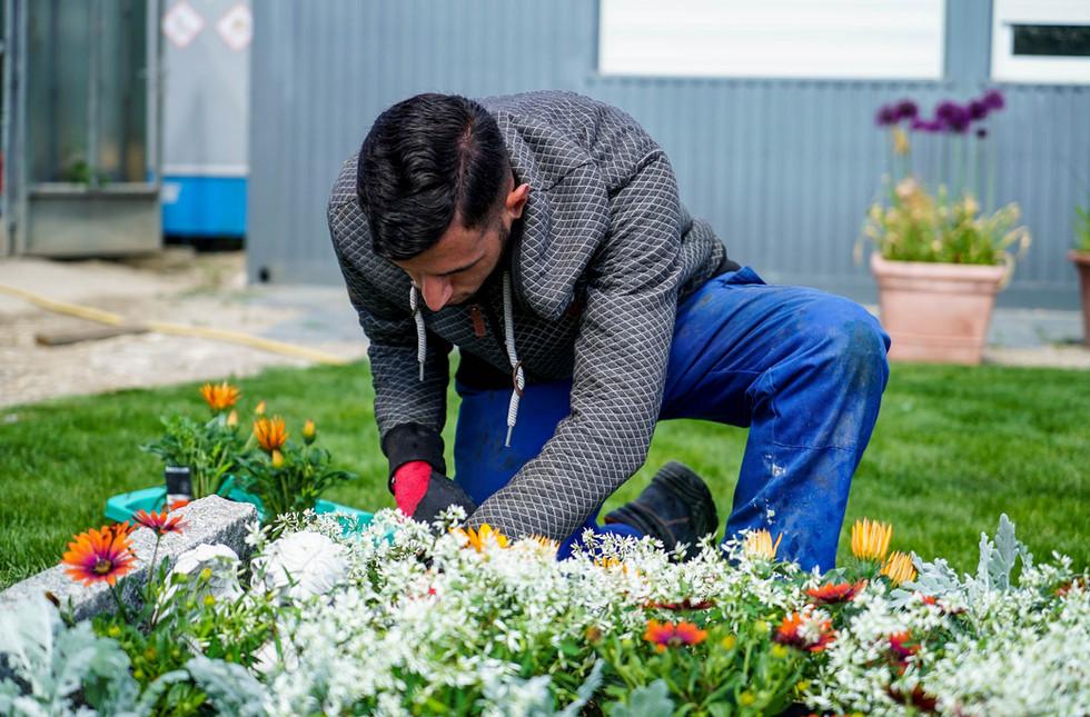 2020 absolut gruen Gartenfotografie Grab