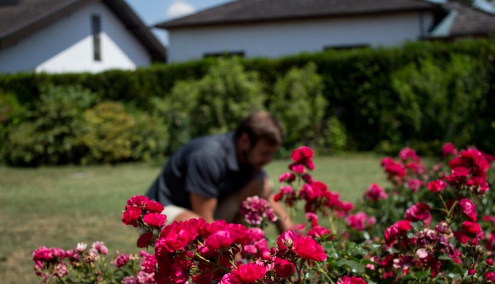 2019_Gartengestaltung_(c)absolutgruen_Gr