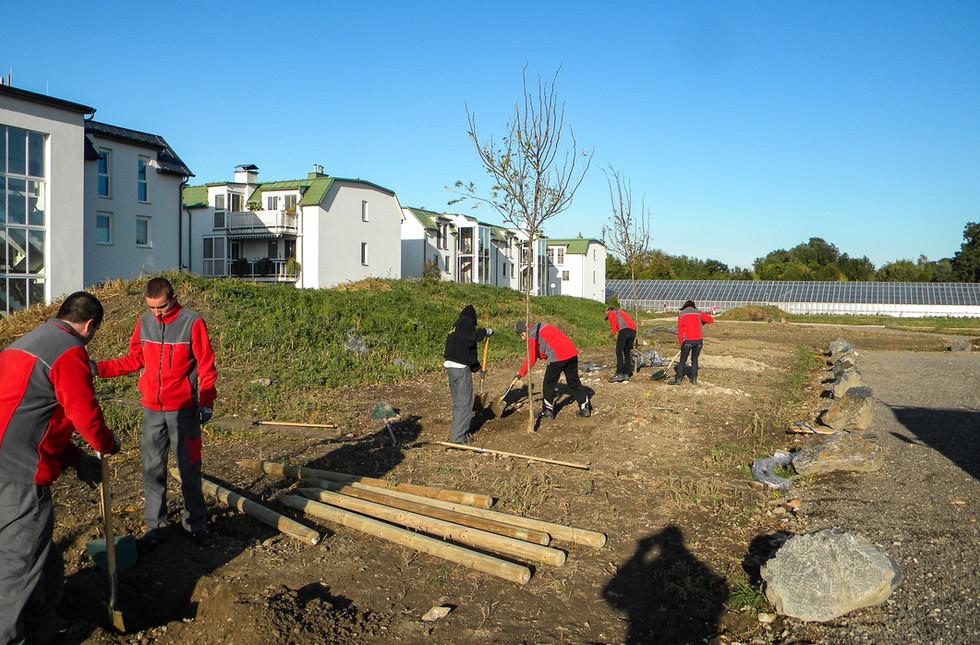 Bäume pflanzen Lehrwerkstätte