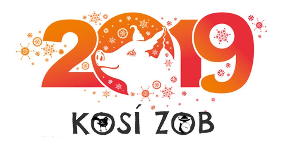 Jaký bude Váš rok Zemského Vepře 2019