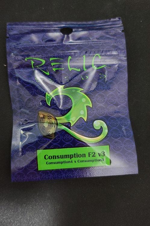 Consumption F2 V3