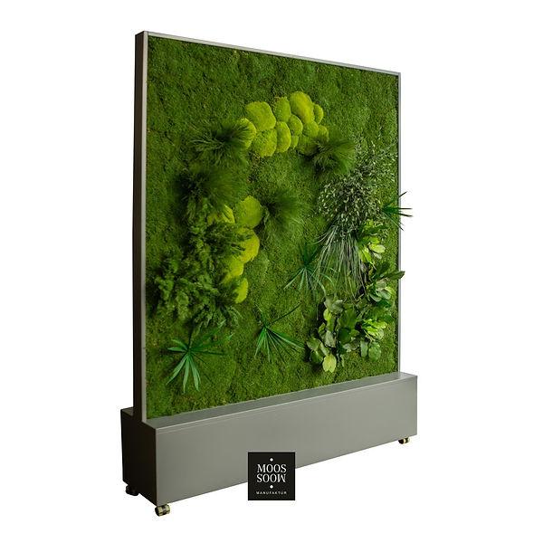 Organischer Raumteiler mit Moos - Echte Moos- Trennwand von Moosmoos - Jetzt auch in Österreich lieferbar