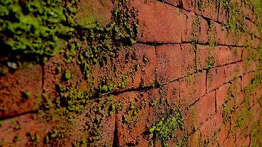 Steinziegel Wandgestaltung für exclusive Innenarchitektur