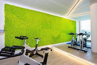 Islandmoos Fitnesscenter Mooswand.jpg