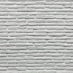Ladrillo blanca