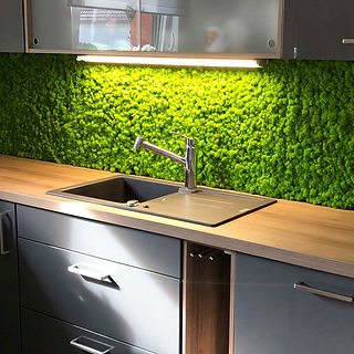 Moos Küchenrückwand
