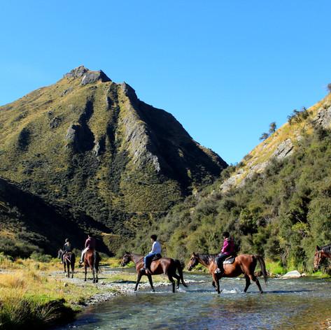 Gills Creek trek
