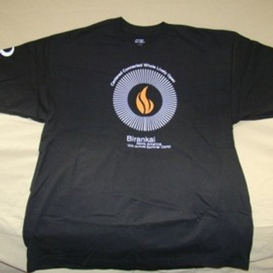 2011 Summer Camp T-Shirt