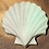 Thumbnail: Seashell Wax Melt