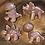 Thumbnail: Dinky Dino Wax Melts - 4 pack