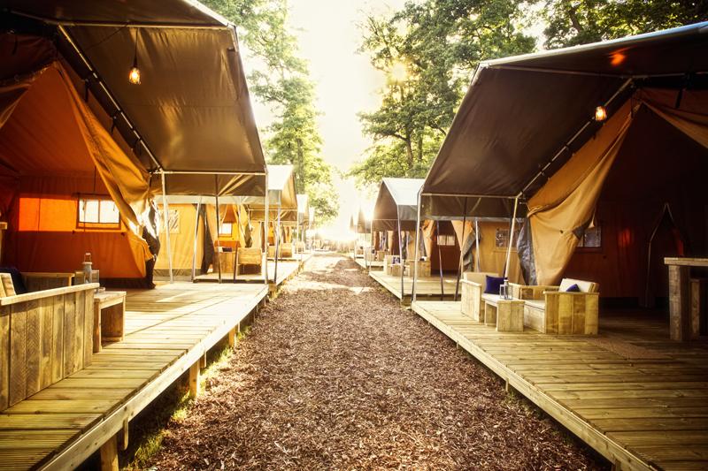 Campsite setting