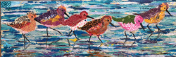 Sanderlings on the sea shore   SOLD
