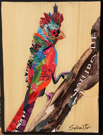 Small bird on twig  $65