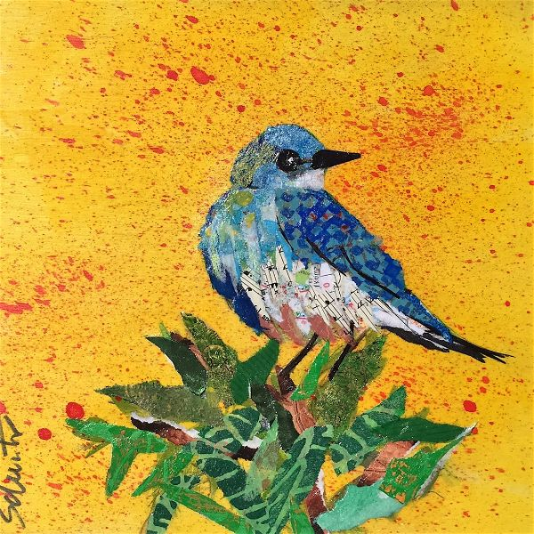 Bluebird   $55