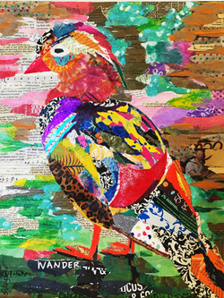 Mandarin duck      SOLD
