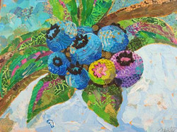 Blueberries   SOLD