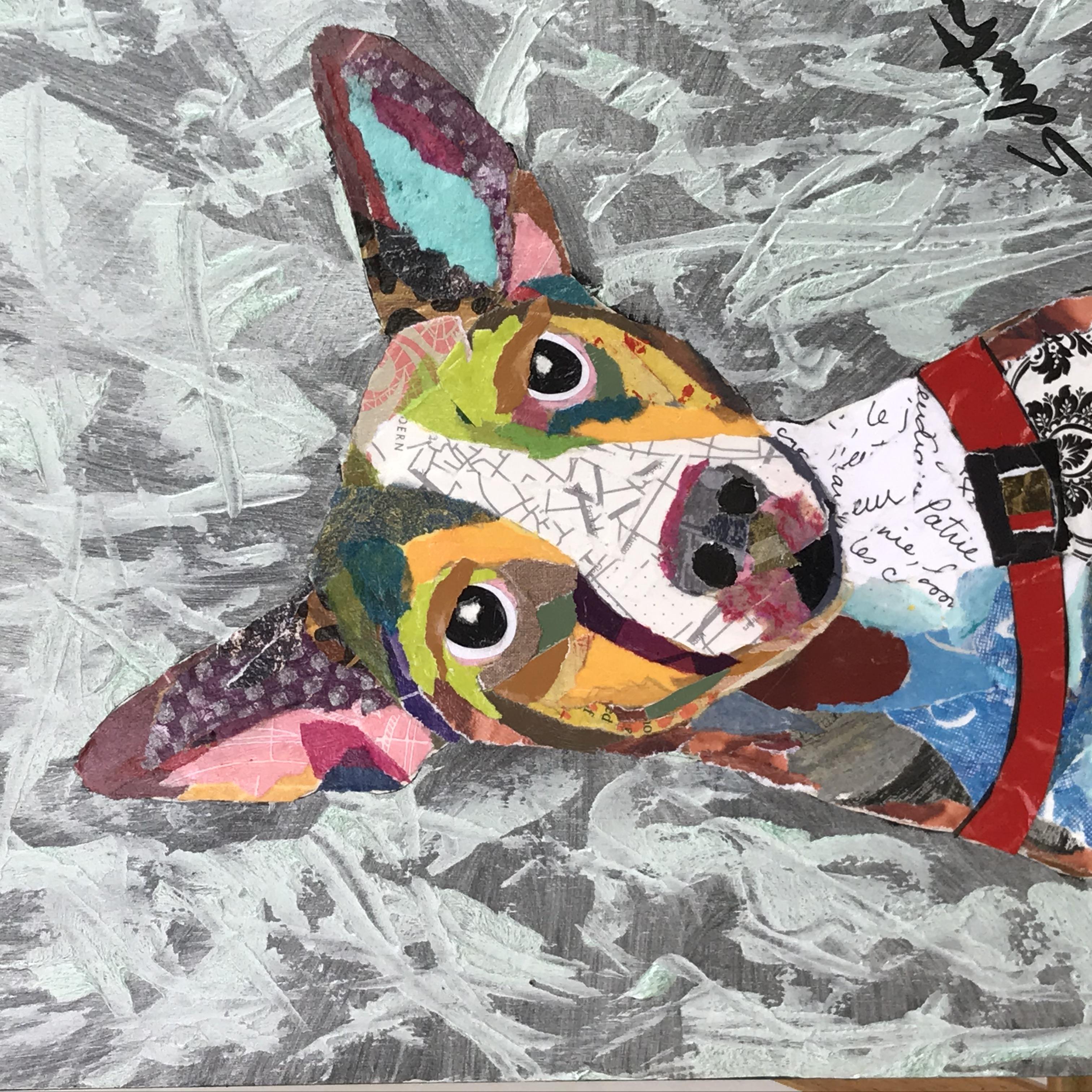 Rat Terrier  $125
