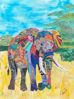 Elephant2   $300