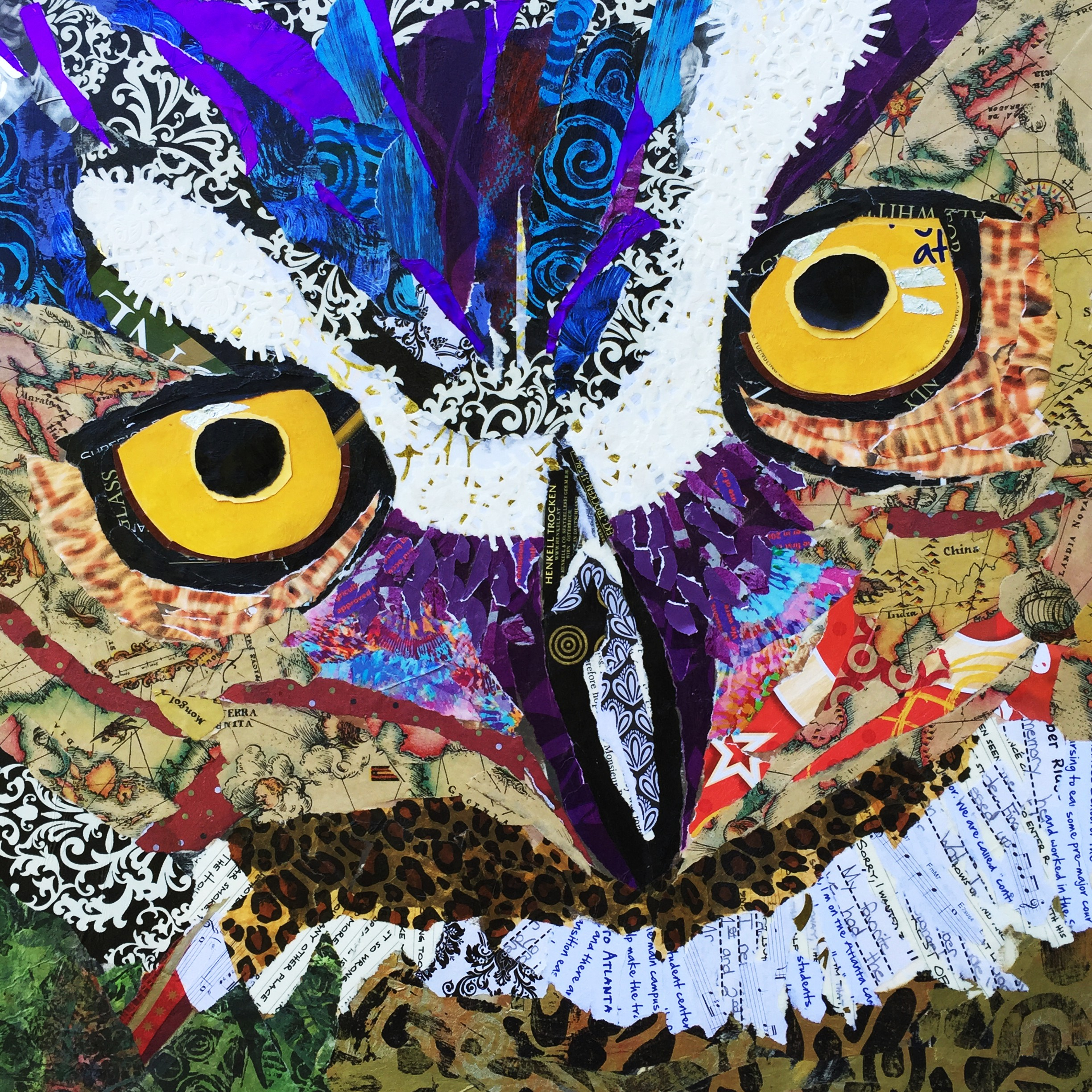 Owl close up  $250