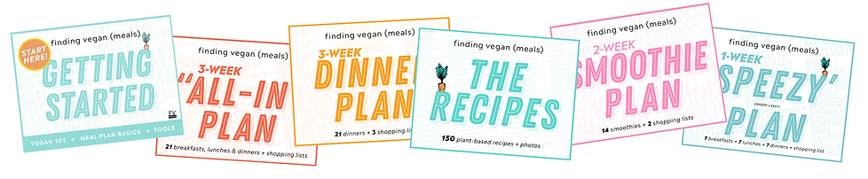 finding-vegan-meals-0009.png