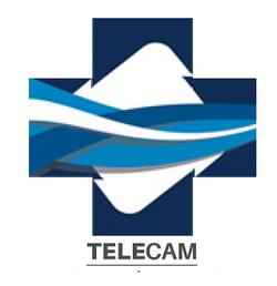 Telecam Leones Monterrey