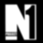PROJECT N1 LOGO.png