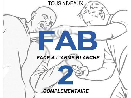 11.11.2017 - FAB Complémentaire à Marseille (13)