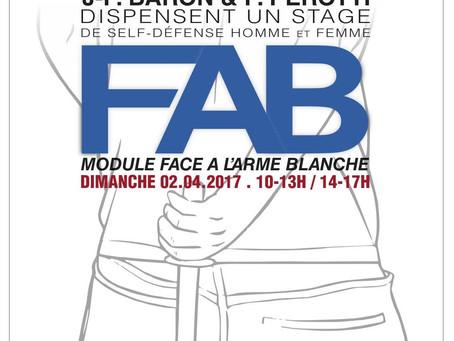 02.04.2017 - FAB à St Jean de Bournay (38)