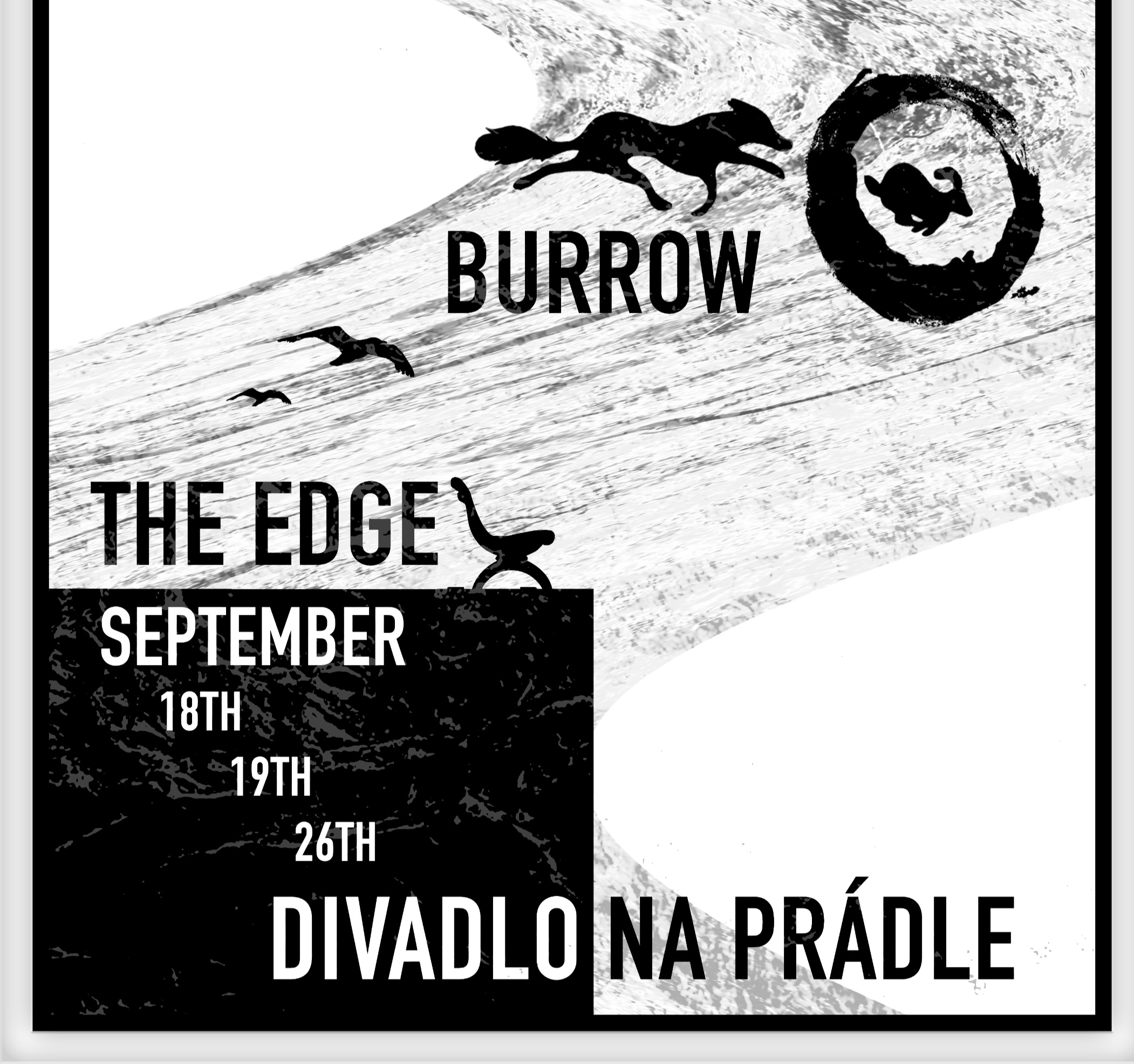 Burrow and The Edge DonkeyDrop Theatre