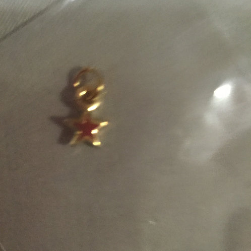Pin 4-Star Chapter Star Dangle (1)
