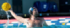 Water.Polo_Banner_800x323.png