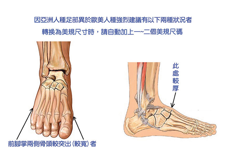 Foot_top & side view copy.jpg
