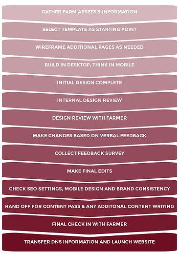 Website-Design-Process-Infographic2-02.j