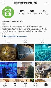 greenbox ig copy.jpg