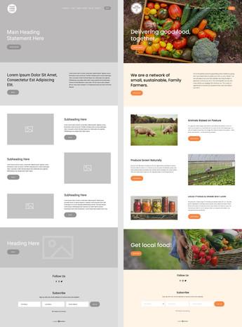 B2D Website Templates S1.jpg