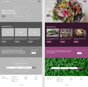 B2D Website Templates EB1.jpg