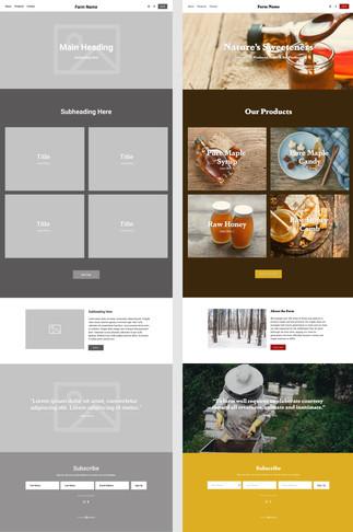 B2D Website Templates E7.jpg