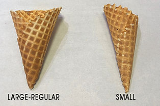 2 Cone Shot Cropped Small W-TEST.jpg