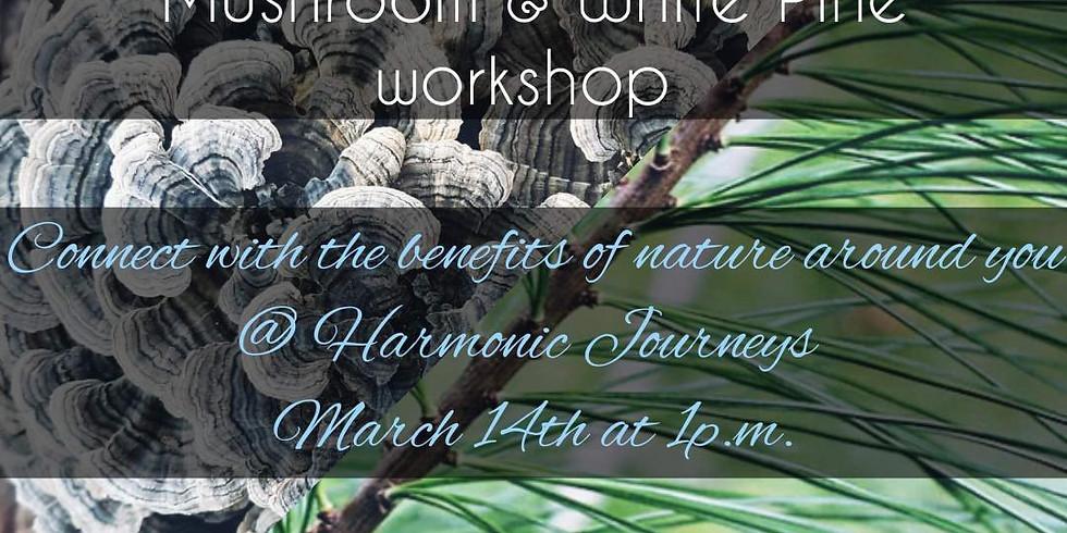 Nature Speaks: Turkey Tail Mushroom & White Pine Workshop.  Kaley Shields of Merkaba Healing with Reiki.