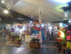 Feria Jardín Plaza 2018