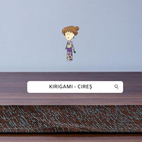 Origami- Kirigami Cires