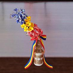 Tricolor Basmac Crina.png