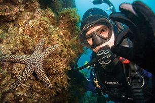 PADI-Dive-Master-Course-Miami.jpg