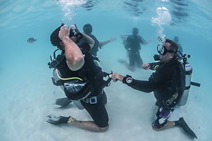 PADI-Open-Water-Course-Miami.jpg