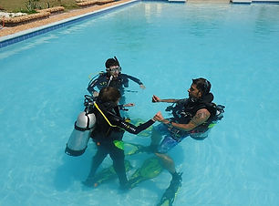 PADI-Refresher-Course-Miami.jpg